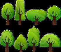 Magnifique : Dans les Landes, 50 000 arbres ont été plantés !