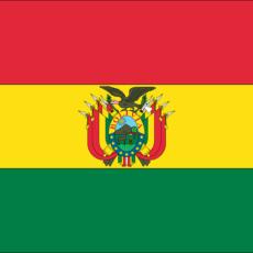 Discours d'investiture du Président bolivien David Choquehuanca